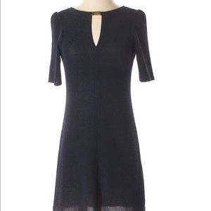 Dorothy Perkins NWOT knit dress Navy Lurex